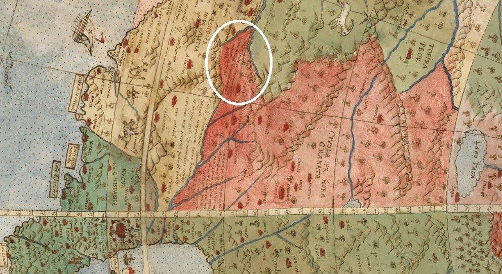 arboles gigantes de urbano monte xalisco 1587.jpg