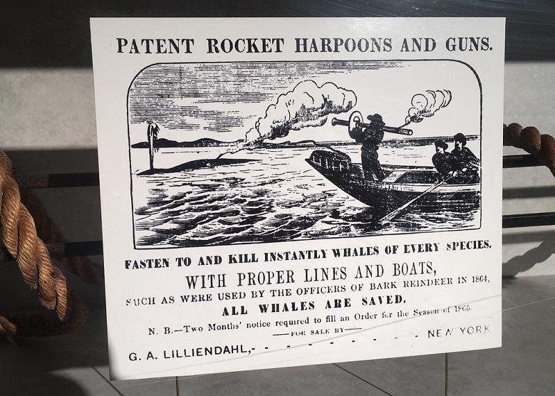 bazooka_1864.jpg
