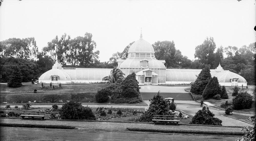 Conservatory of Flowers 18792.jpg