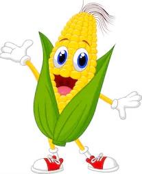 corn_11.jpg