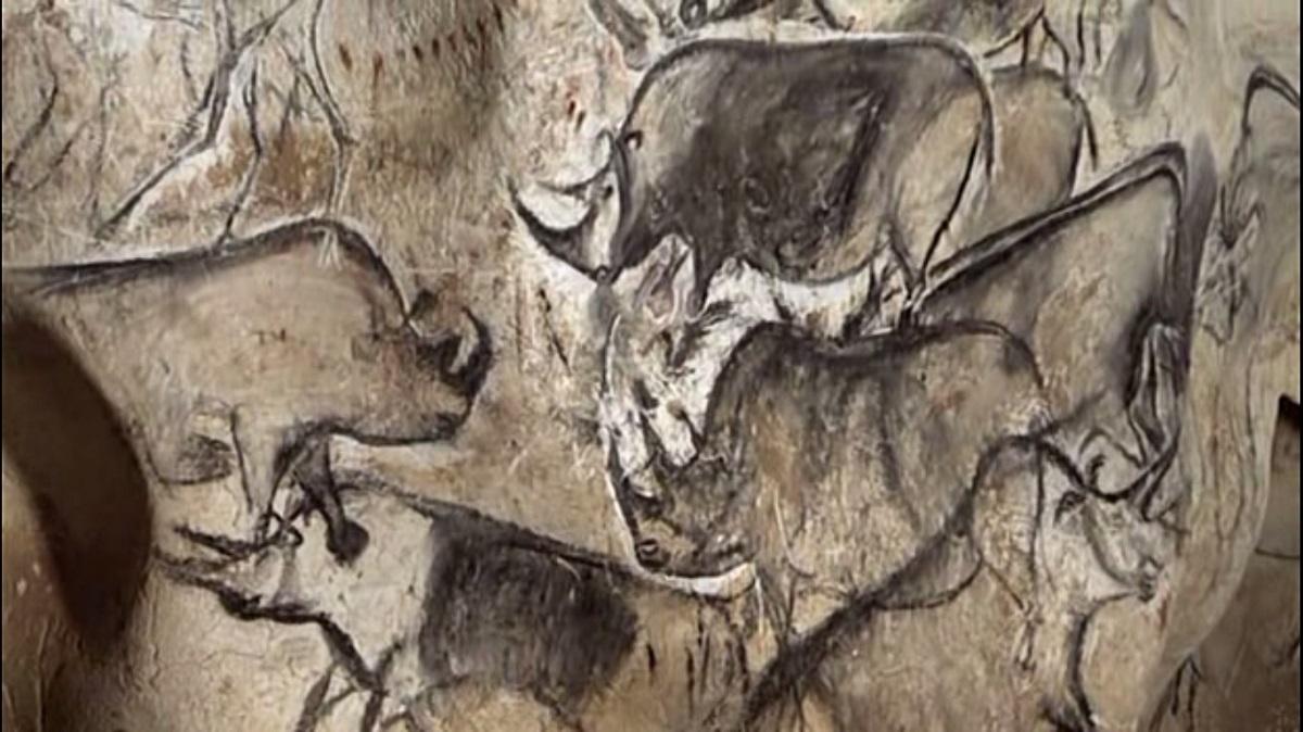 Rhinos_Chauvet_Cave.jpg