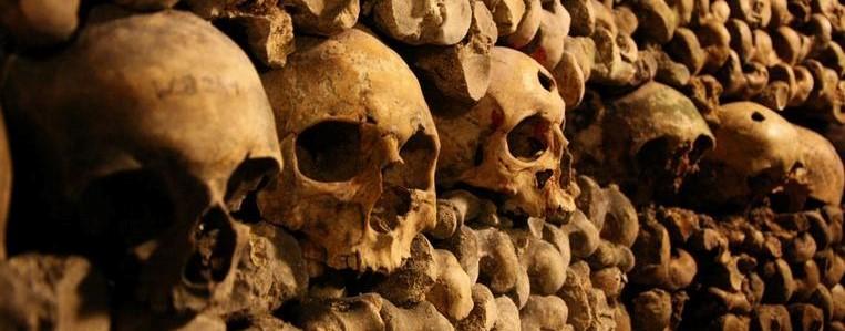 skulls_1.jpg
