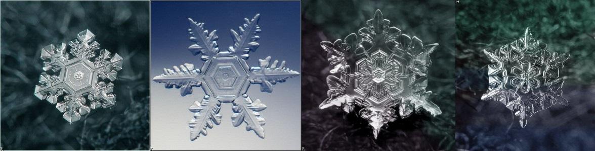 Snow_Flake_star_fort_11.jpg