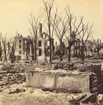 trees-and-poles_after_urban_fire_4.jpg
