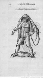 Illustrations de Ulyssis Aldovandi Monstrorum_1.JPEG