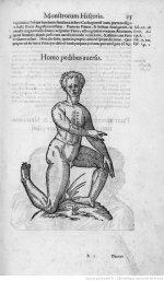 Illustrations de Ulyssis Aldovandi Monstrorum_6.JPEG