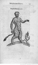 Illustrations de Ulyssis Aldovandi Monstrorum_10.JPEG