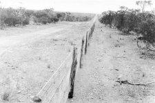 rabbit_proof_fence_2.jpg