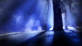 moon_through_trees_3.jpg